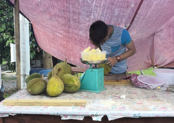Worth the weight: Malaysian sells durians without weighing the shell