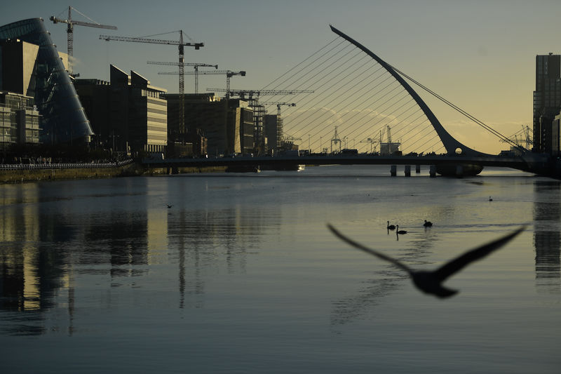© Reuters. FILE PHOTO: Swans swim in the river Liffey in the financial district of Dublin