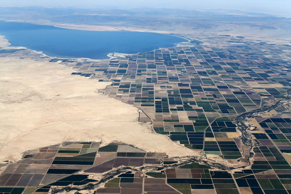 Agricultural farm land is shown near the Salton Sea and the town of Calipatria in California May 31, 2015. — Reuters pic